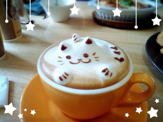 台中.西區~遇見敲口愛的「貓.旅行」拉花咖啡輕食館與貓約會趣