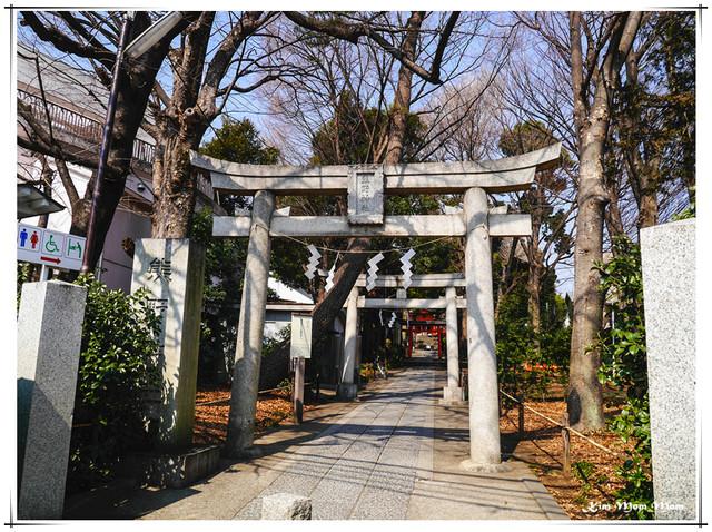 東京 自由が丘-隱藏住宅區中的熊野神社