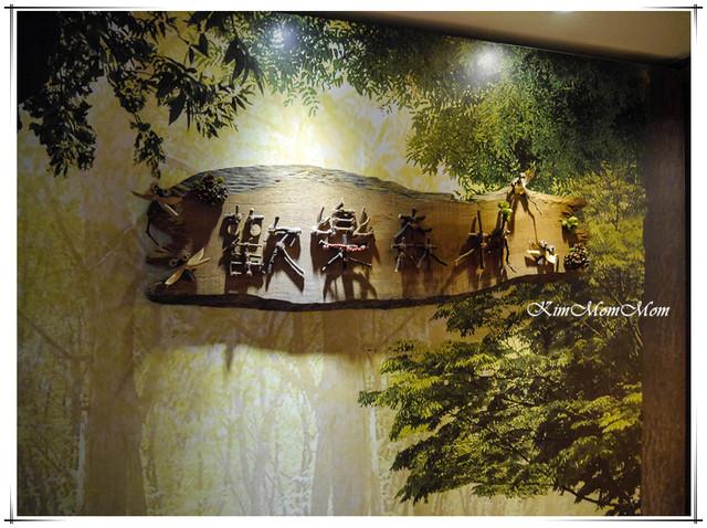 花蓮-翰品▲親子渡假酒店▲150坪 超大室內遊戲空間▲歡樂森林~太歡樂了