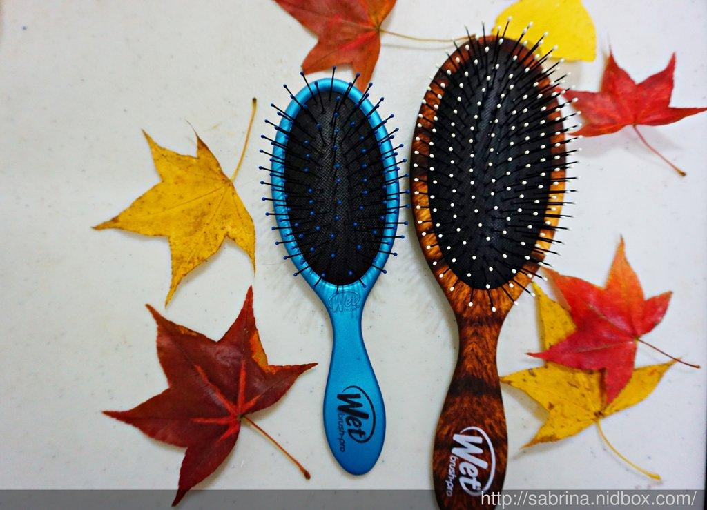 體驗~長髮美女必備的魔法梳Wet Brush世上最溫柔的梳子